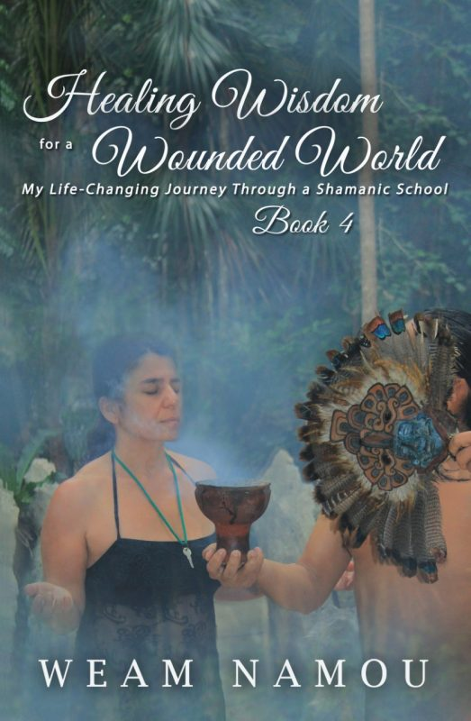 Healing Wisdom for a Wounded World: My Life-Changing Journey Through a Shamanic School (Book 4)